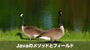 javaのメソッドとフィールド