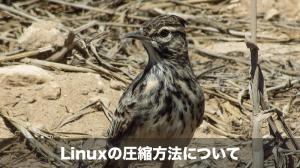 linuxの圧縮方法