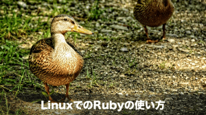 linux-ruby