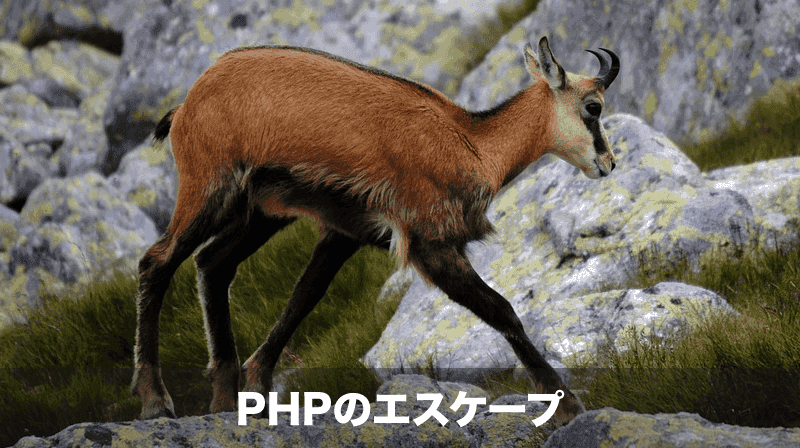 phpの文字列エスケープ