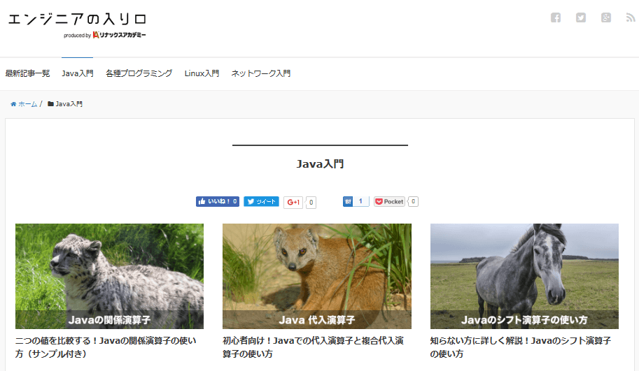 java-study-web