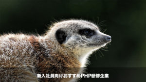 PHP研修企業 トップ画像